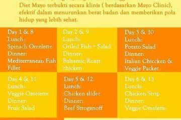 Menu Modified Diet Mayo