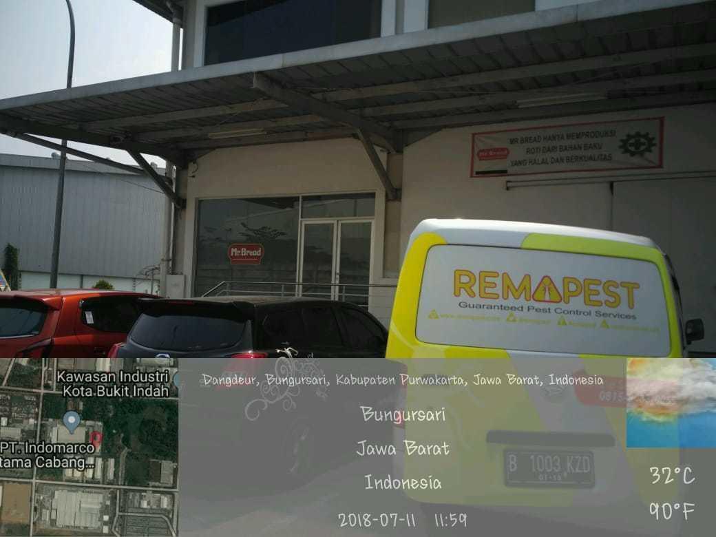Guaranteed Pest Control Services - REMAPEST