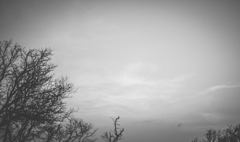sebun photography