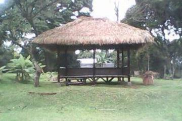 saung yang terbuat dari bambu