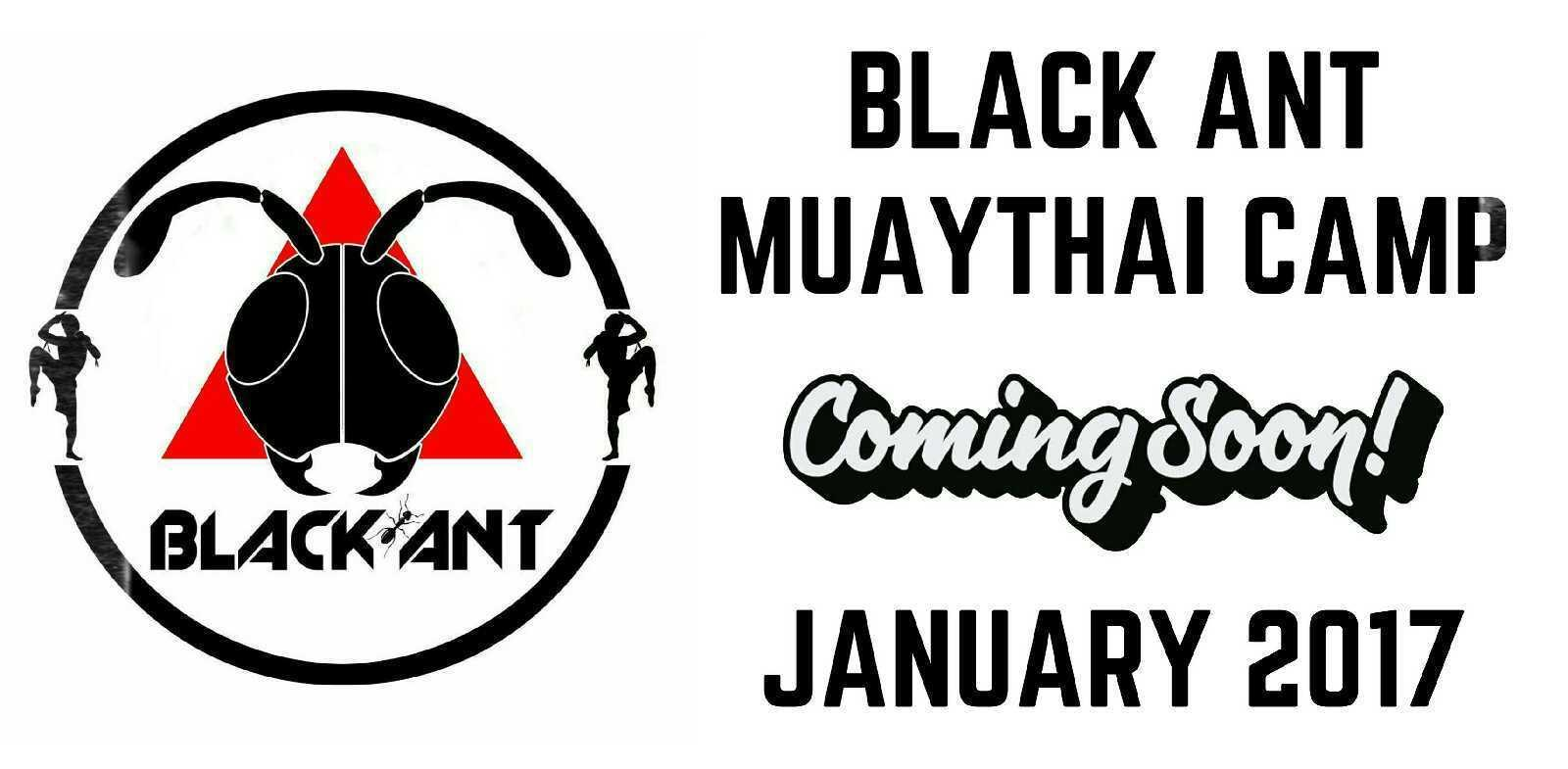 BLACK ANT Muaythai Camp