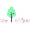 Baby Sequoia