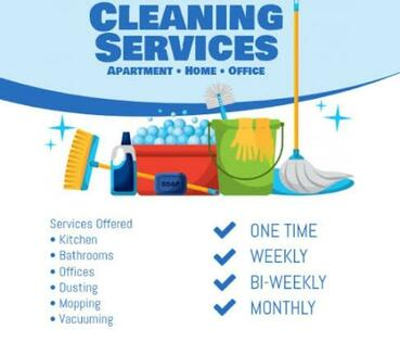 Neela cleaning services