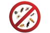 Thumb pest control professionals